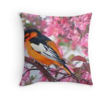 Oh! Oh! Oriole! Throw Pillow
