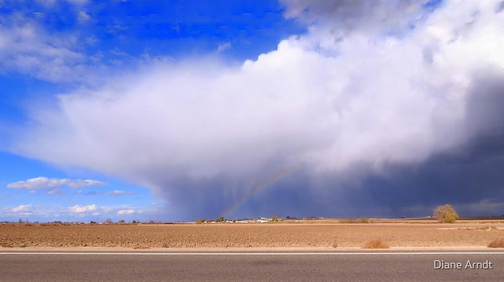 Life On The Plains...Marsing, Idaho by Diane Arndt