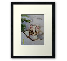 White weasel, white snow Framed Print