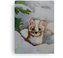 White weasel, white snow Canvas Print
