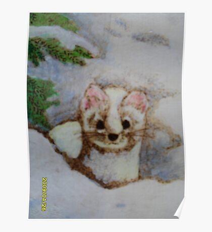 White weasel, white snow Poster