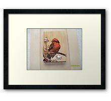 scarlet tananger Framed Print