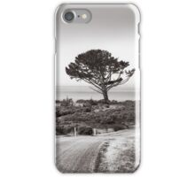 Roadside Tree iPhone Case/Skin