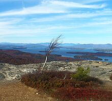NH Mountain Views by Kerry Cillo