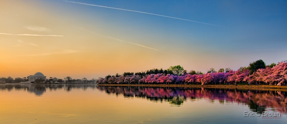 Tidal Basin Color by Eric G Brown