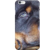 Photographic Portrait Of A Young Male Rottweiler iPhone Case/Skin