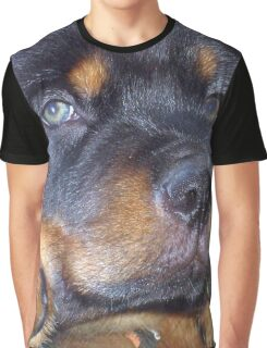 Photographic Portrait Of A Young Male Rottweiler Graphic T-Shirt