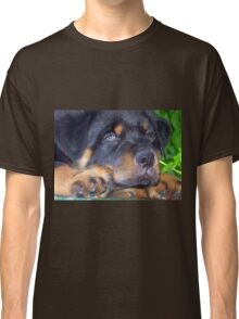 Photographic Portrait Of A Young Male Rottweiler Classic T-Shirt