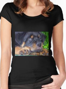 Photographic Portrait Of A Young Male Rottweiler Women's Fitted Scoop T-Shirt
