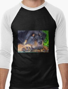 Photographic Portrait Of A Young Male Rottweiler Men's Baseball ¾ T-Shirt