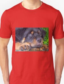 Photographic Portrait Of A Young Male Rottweiler Unisex T-Shirt