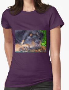 Photographic Portrait Of A Young Male Rottweiler Womens Fitted T-Shirt