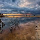 Driftwood and sunset reflections by Cheryl Styles