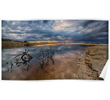 Driftwood and sunset reflections Poster