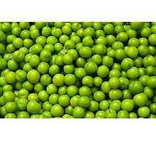 Green Plums  Photographic Print