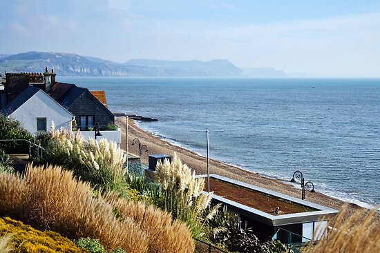 November Morning ~ Lyme Regis by Susie Peek