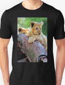 Lion Cubs at Play T-Shirt