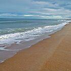 Shoreline by artistinoz