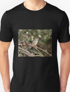 Red-browed Firetail T-Shirt