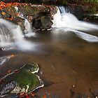 Scalber Beck by Nick Atkin