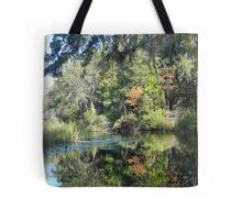 FIRST TOUCH  OF FALL Tote Bag