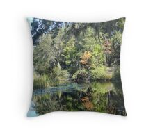 FIRST TOUCH  OF FALL Throw Pillow