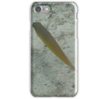 Above a single fish iPhone Case/Skin
