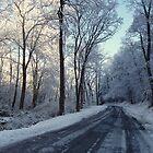 Winter Road by jpsphotoart