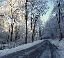 Winter Road by jpsphotoart