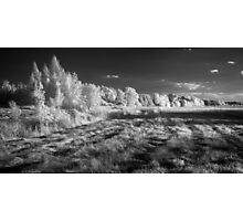 Infrared panorama Photographic Print