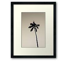 palm tree ver.warmblack Framed Print