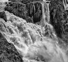 Powerful Barron Falls by hereswendy