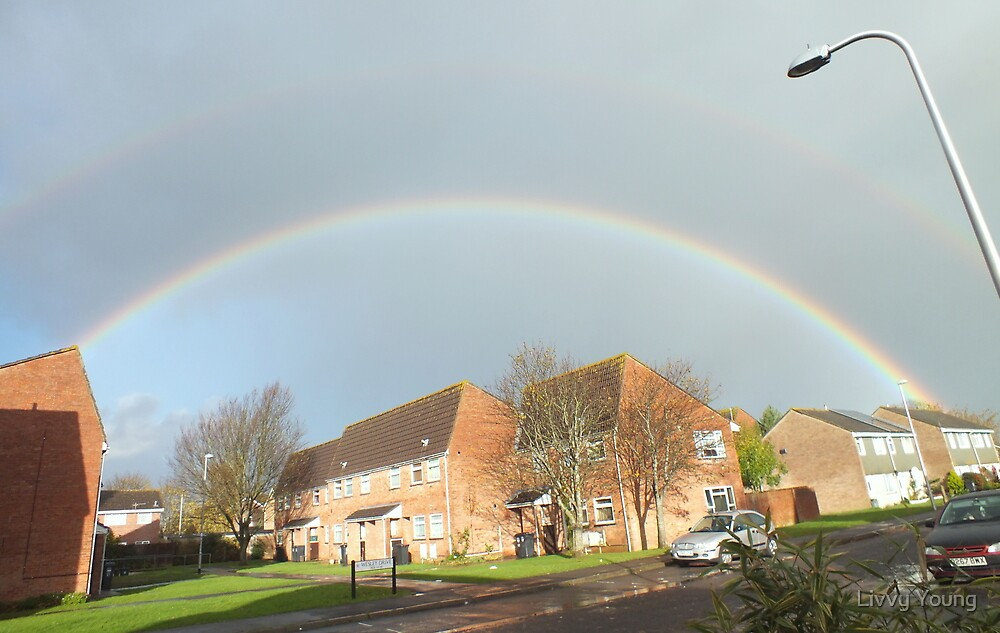 Double Rainbow by Livvy Young