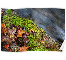 Autumn Leaves and Rushing Water Poster