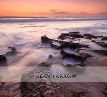 Southward Bound by Sean Farrow