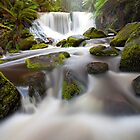 Horseshoe Falls by Nick Skinner