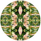 Natures Mandala Peachy by Circe Lucas