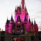 Cinderella's Castle by Flippinawesome