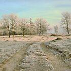 A Country Road in Winter by ienemien