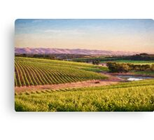 McLaren Vale Magic ED Canvas Print