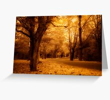 surreal colours of autumn Greeting Card