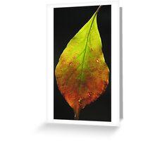 Autumn Solo Greeting Card