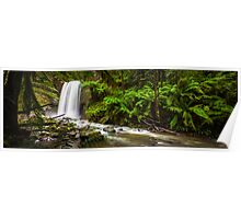 Hopetoun Falls in The Otway rainforest, Australia Poster