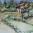 La Vigna, Anghiari, the neighbours .32x42cm Pen and wash 2010© by Elizabeth Moore Golding