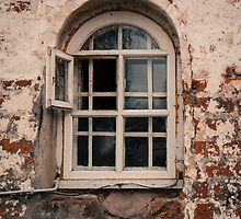 Monks Window by TeaRose