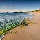 Point Peron Beach by Glen  Robinson