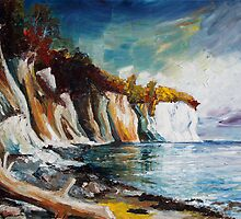 Chalk Cliffs On The Island Ruegen In Fall by Barbara Pommerenke