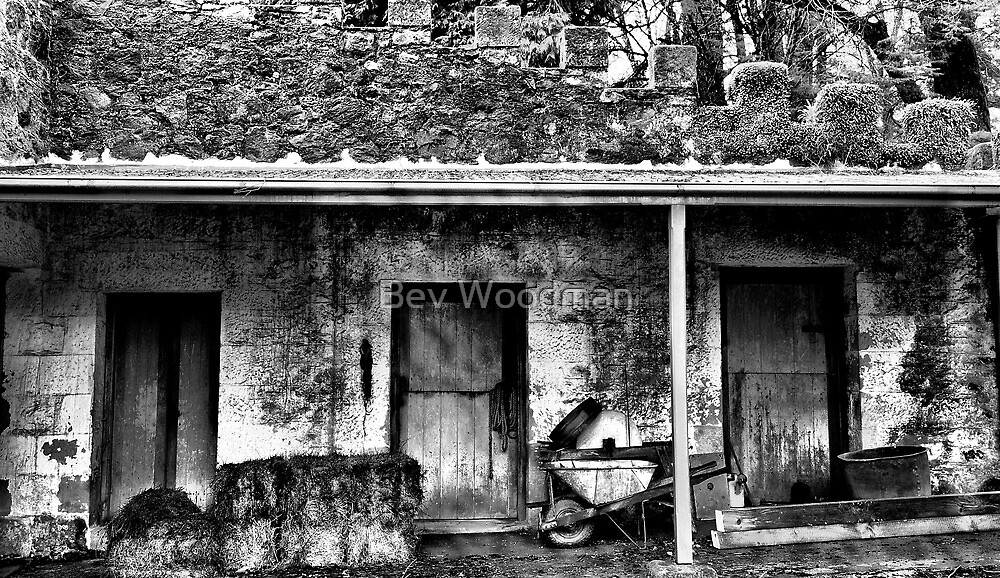 The Stables - Wynstay - Mt Wilson NSW by Bev Woodman