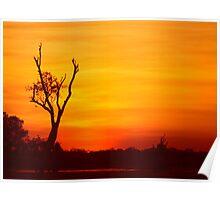 Sunset - Northern Territory - Kakadu Poster