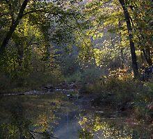 Clayton Lake Creekbed by Carolyn  Fletcher